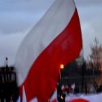 Flaga wśród Flag