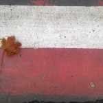 listopadowa droga